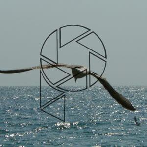 Klidné Černé moře