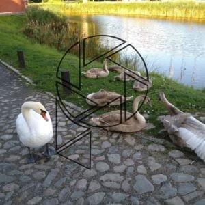 Probouzející se labutě u Malmöhus slott