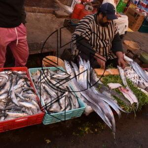 Trh pro místní v medině IV