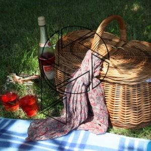 Piknik (2013)